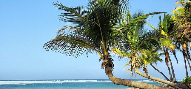 Reisorganisaties last minute Cuba all inclusive